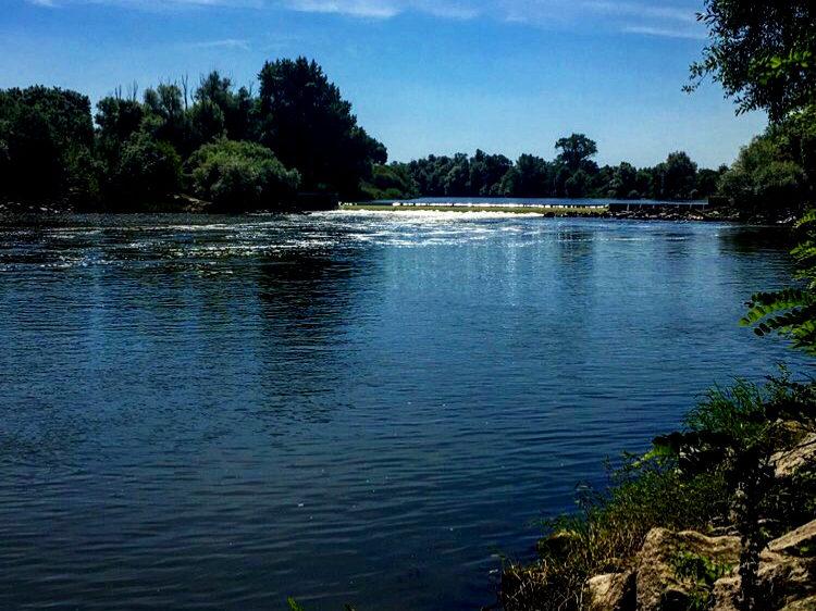 Pêche en Lorraine