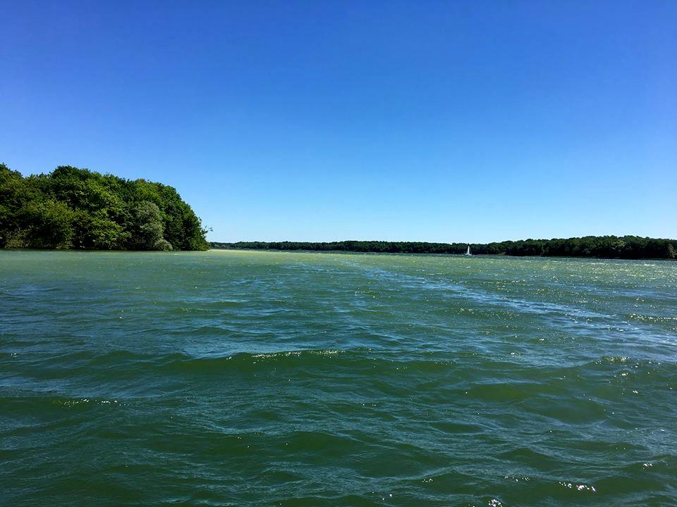 Pêche des carnassiers sur le lac de Madine